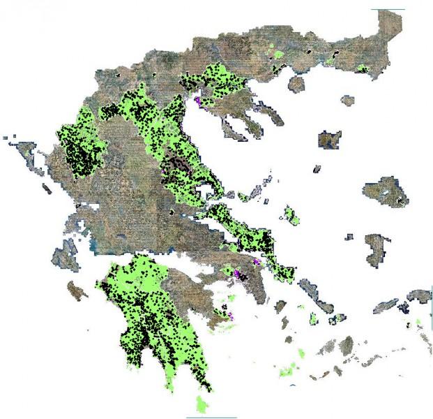 Δασικοί Χάρτες